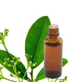 ravintsara-huile-essentielle-mamie-star