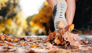 sport-en-automne